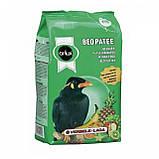 Versele Laga Orlux beo patee 1kg -Корм для птиц Майна, фото 3