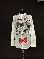 Молодёжная женская белая рубашка  с изображением кота