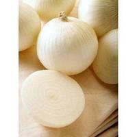Семена лука Сьерра Бланка 250 000 сем. Seminis / Семинис