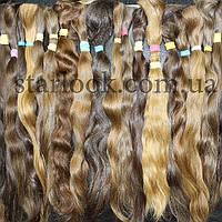 Славянские волосы натуральные неокрашенные в срезе