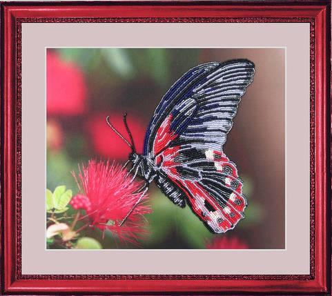 """Набор для вышивания бисером """"Бабочка"""", фото 2"""
