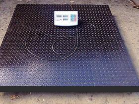 Весы платформенные TCS-T 3000 кг