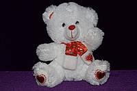 Медведь, фото 1