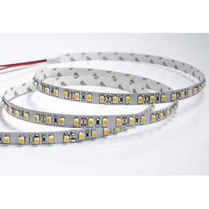 Светодиодная лента smd 3528 120д/м IP65 белый, фото 2
