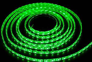 Светодиодная лента smd 5050 60д/м IP65 зеленый, фото 2