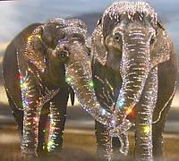 Романтическая картина из страз Влюбленные слоны, фото 1