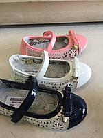 Туфли в дырочку для девочек Camo оптом Размеры 24-29