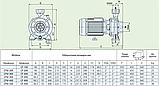 Центробежный промышленный насос Speroni CF 300 (трёхфазный), фото 5