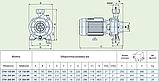 Центробежный насос Speroni CFM 150 BR (бронзовая крыльчатка), фото 5