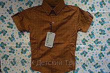 Рубашка Турция короткий рукав 1-6 лет опт.