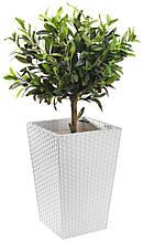 Горщик для рослин з ротанга TEIS. Білий колір