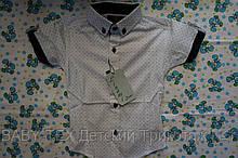 Рубашка 1-6 лет короткий рукав