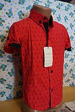 Рубашка 6-12 лет короткий рукав