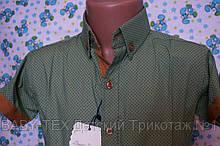 Рубашка 6-12 лет короткий рукав опт