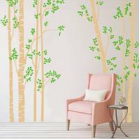 Интерьерная виниловая наклейка Березовая роща (большая наклейка, винил, оракал, большие наклейки деревья), фото 1