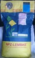 Озимый рапс НПЦ 9800 (Лембке), фото 1