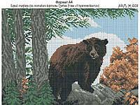 Ридний край Ж-008 Бурый медведь, схема под бисер