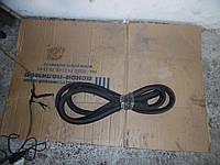 Уплотнитель двери зад. левой (Хечбек) Renault Scenic II 03-06 (Рено Сценик 2), 8200077500