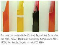 Трехсахарный агар с солями железа Triple Sugar Iron Agar (ТSI Agar)
