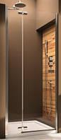 Душевая дверь AQUAFORM VERRA LINE 100 103-09402P левосторонняя
