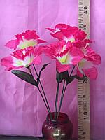Нарцисс шелковый