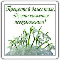 """Магнит """"Процветай..."""""""