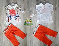 Летний костюм для девочки: туника, коттоновые бриджи с поясом