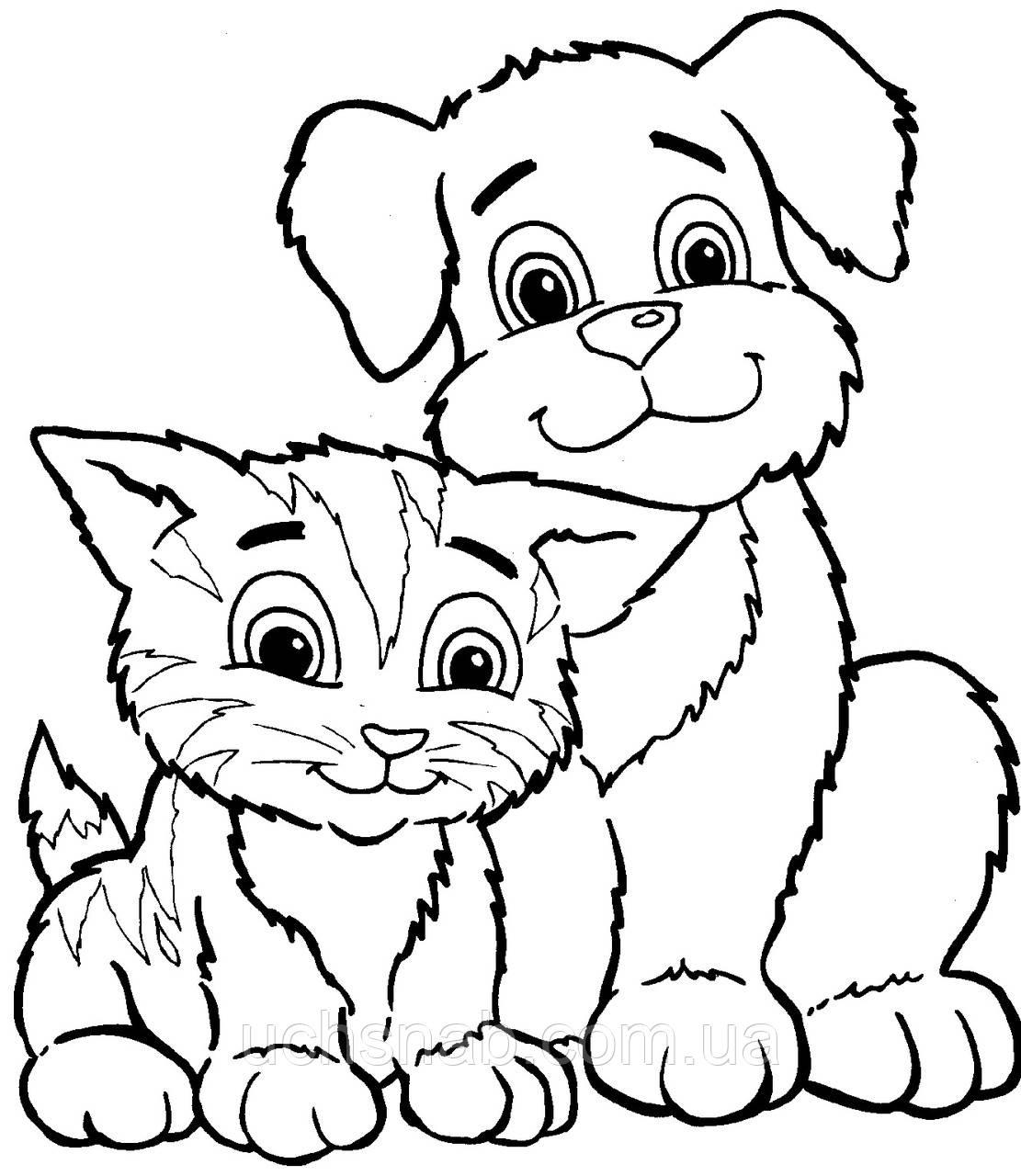 Раскраски для детей Кот и собака купить недорого ...
