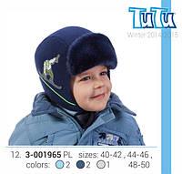 Шапка  для мальчика TuTu арт.12.. 3-001965(48-50) Шапка, TuTu, 48-50, Польша, Флис, синий