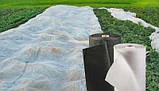 Агроволокно 100г/кв.м ширина 1.07м. рулон 50(чорне), фото 3