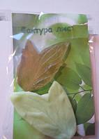 Молд + вайнер 07.01 Лист фигурный ( р-р 7,5 х 5 см) для фоамирана и глины