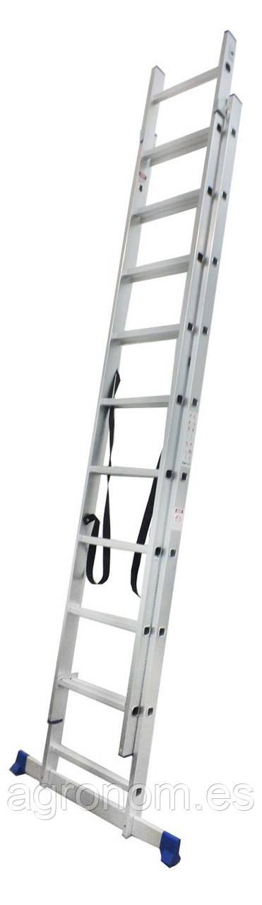 Универсальная лестница Werk LZ2109 2х9