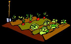 Микроудобрения для сада и огорода