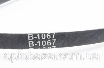 Ремень B-1067 для мотоблока бензинового  9 л. с., фото 2