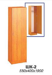 Шкаф ШК-2 (мебель для гостиниц)