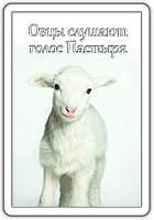 """Магнит """"Овцы слушают голос Пастыря"""""""