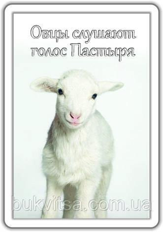"""Магнит """"Овцы слушают голос Пастыря"""", фото 2"""