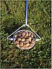 Ролл - инструмент для сбора грецкого ореха(Украина)