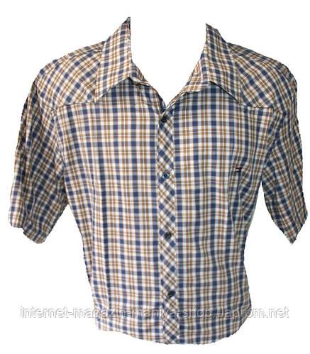 Мужская рубашка Турция батал