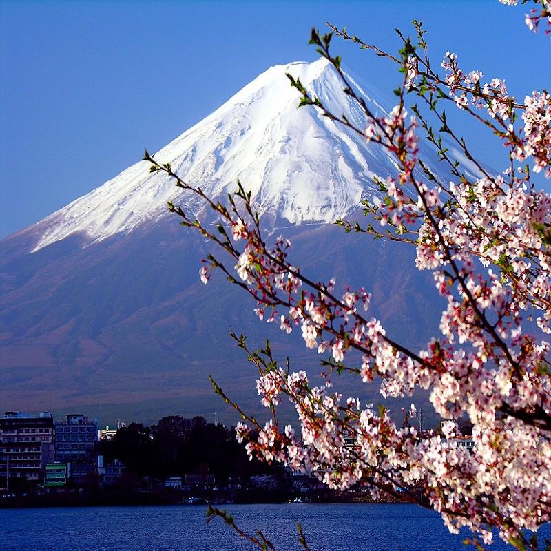 Групповые туры в Японию - ЭЛИОТ в Киеве