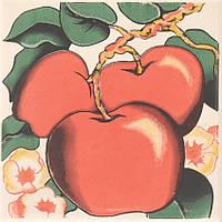 Плитка Атем Орли настенная декор Atem Streza Apple 100x100 мм