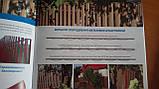 Штакетник металлический, евроштакетник, 0.5 мм, полиэстер, Польша, Италия, Германия, фото 6