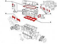 К-кт прокладок головки блоку циліндрів Fiat Doblo 1,2 (2004-2005)