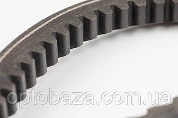Ремень 17x963L для мотоблока бензинового  9 л. с., фото 2