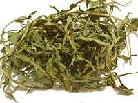 Листья Одуванчика лекарственного (Taraxacum officinale),  100 грамм