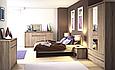 Шкаф 3D4S с зеркалом НОРТОН (ВМВ-Холдинг), фото 2