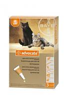 Advocate (Адвокат) Капли от блох, клещей и гельминтов для кошек весом до 4 кг - 1 пипетка