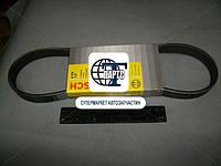 Ремень генератора 2112 6PK737 BOSCH