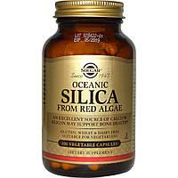 Океанический оксид кремния из красных водорослей, Solgar, 100 вегетарианских капсул