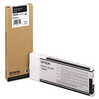 Картридж Epson SP-4880 Photo Black C13T606100 (код 274265)